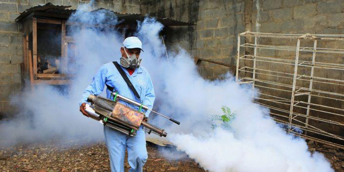 Empresa de Control de Plagas Chile | Alfapest