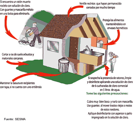 Cuidado higiene ambiental Chile| Alfapest